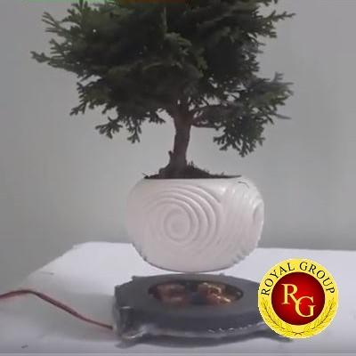 Nam châm bonsai bay 1kg